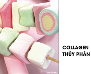 Sự khác biệt của Collagen thủy phân từ Mesoestetic